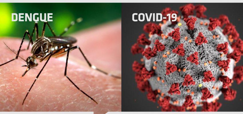 La Defensoría del Pueblo recordó medidas contra el dengue y recomendaciones para prevenir el contagio de coronavirus