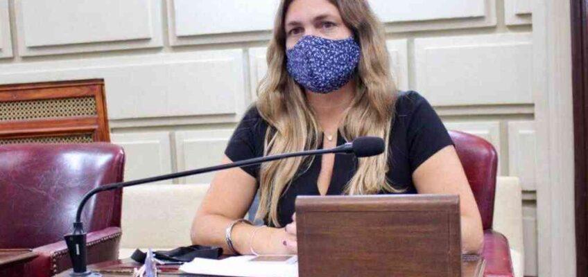 """Diputados piden a la provincia que garantice el """"vínculo educativo"""""""